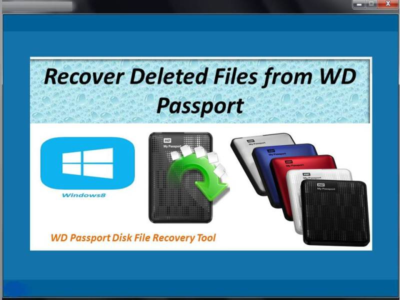 Recover lost files from WD passport disk